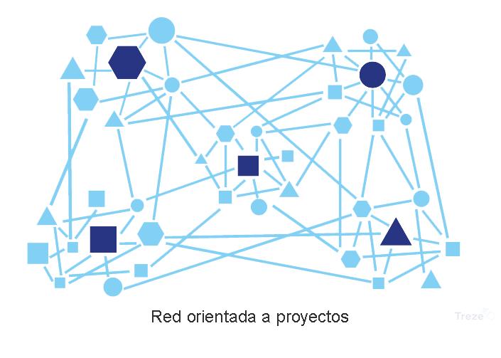 estructura-organizacional-por-proyectos